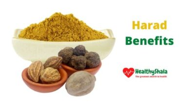 Photo of Harad Benefits in Hindi| Benefits And Sides Effects of Harad