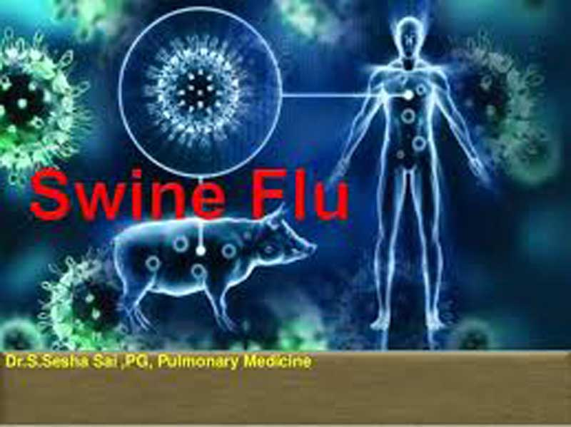 Deadly Disease Swine Flu and Amazing Shocking Detail
