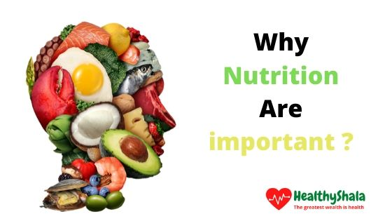 10+ Nutrition and its Important Types of Nutrition, its other types