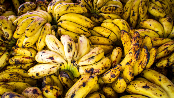 Amazing 80+ Tips of Banana Benefits for Weight Loss 4