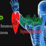 What is Immune System